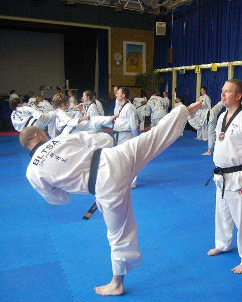 an introduction to the art of tae kwon do Introduction one of the first books that i reviewed on this blog was a killing art:  the untold history of tae kwon do by alex gillis to this day it.